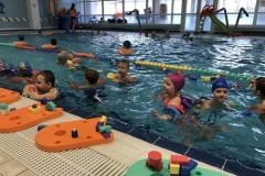 Plavání Litovel